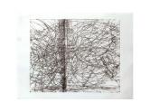 chreographingtheline monoprint23